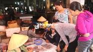 Nghệ An: Tàu thuyền nằm bờ tránh bão, giá hải sản tăng đột biến