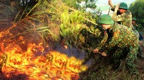 Nghệ An: Lửa rừng lan rộng, hàng nghìn người cõng nước băng đồi dập lửa