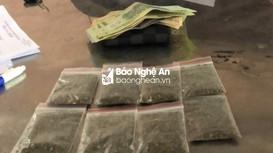 Đường dây mua bán lẻ ma túy cho học sinh ở miền núi Nghệ An