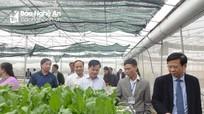 Yên Thành xây dựng 15 mô hình sản xuất nông nghiệp ứng dụng công nghệ cao