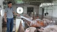 Chủ động phòng chống trước nguy cơ xâm nhiễm bệnh dịch tả lợn Châu Phi