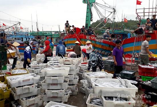 Chế biến sản phẩm thủy sản nâng cao chất lượng hàng hóa