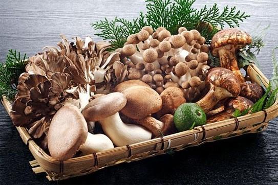 Những thực phẩm nên tránh khi bị loãng xương - ảnh 5