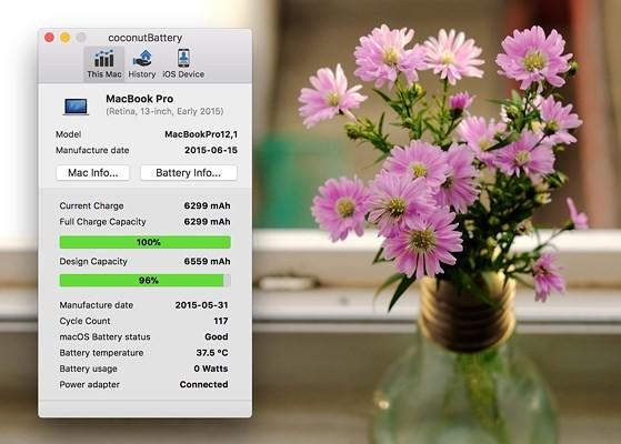 Cách kiểm tra số lần sạc trên iPhone, iPad - ảnh 3