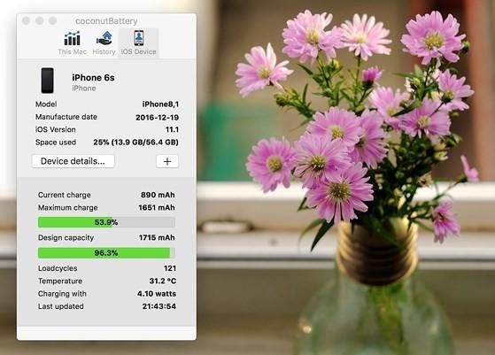 Cách kiểm tra số lần sạc trên iPhone, iPad - ảnh 4