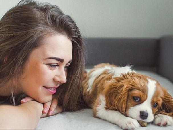 Một trong những cách giúp hạn chế thú cưng lây truyền bệnh cho người là tiêm ngừa cho chúng /// Shutterstock