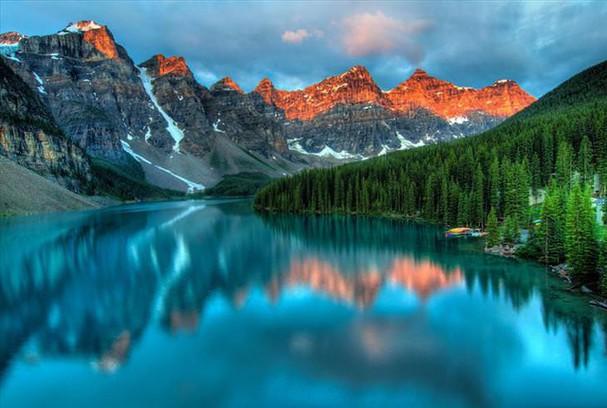Những khu rừng đẹp nhất thế giới - ảnh 1